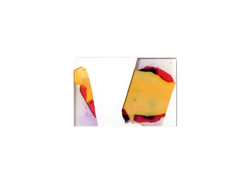 Capi Cabrera Sintética y orgánica I 2016 Pintura sintética y acrílico sobre plexiglas - 15,5 x 23 cm.